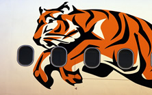Tiger logo on plane